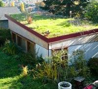 Isolation toiture verte