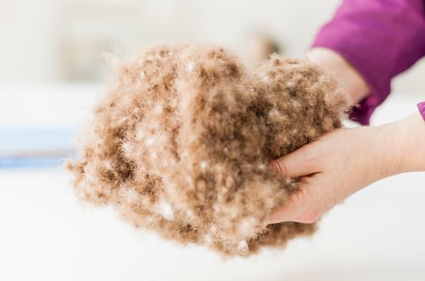 qu'est-ce que la laine de bois